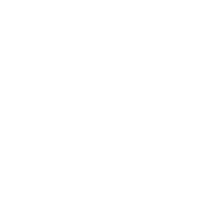 logo_ctpd_2017_white_rec